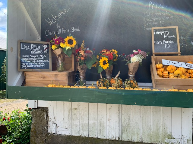 flowers at the farm stand