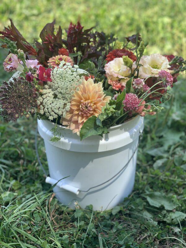 bulk bucket of flowers