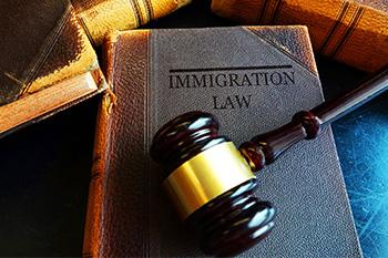 Litigio / Tribunal de Inmigración