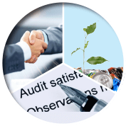 consulting and auditing