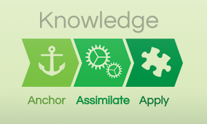 wp-BuildKnowledge