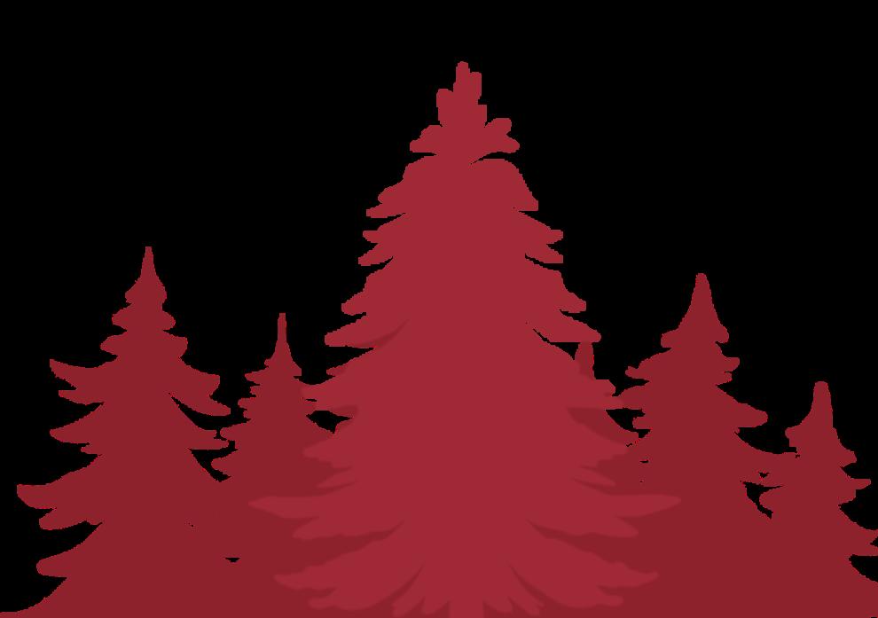 RTR Tree Service