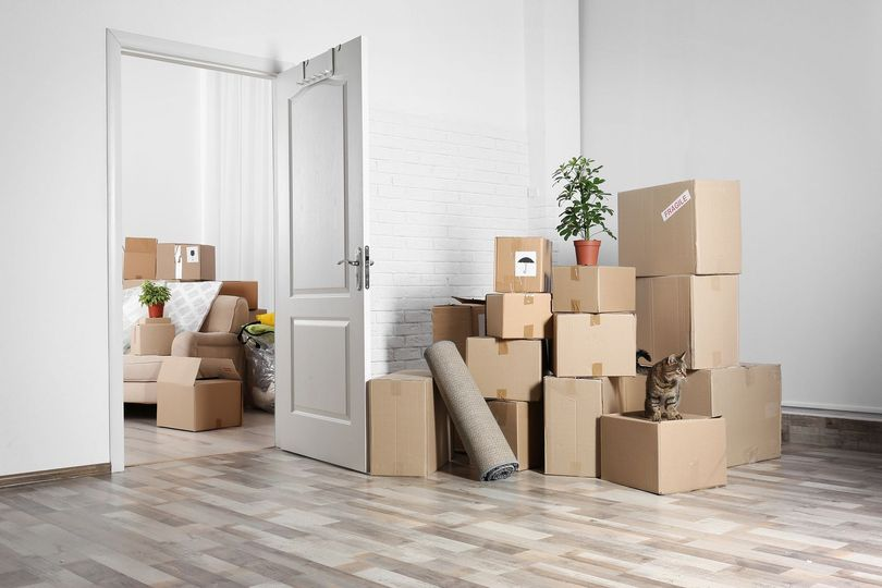 Why hiring a moving company should be your priority while relocating?