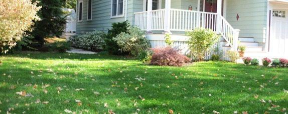 fall-lawn-fix-2