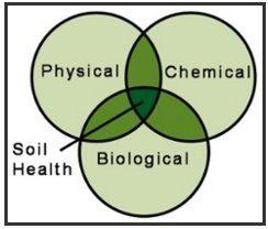 soil-test-2