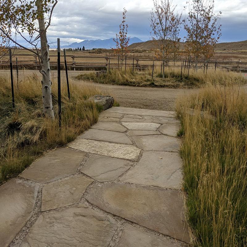 Magic Valley Turfgrass