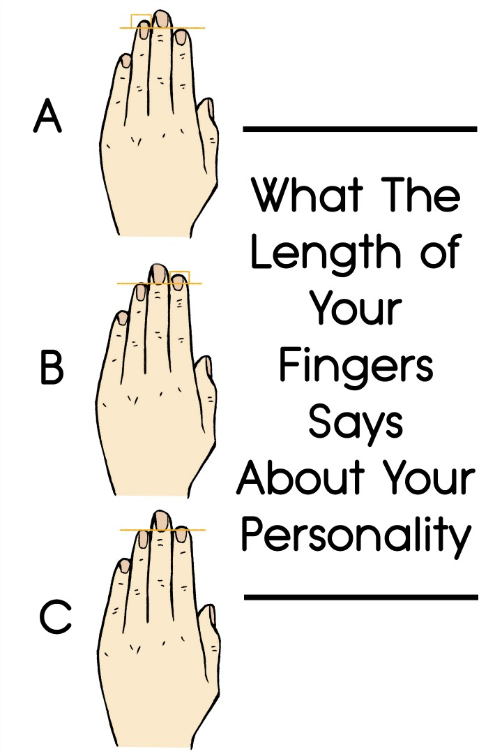 What The Length of Your Fingers Says About Your Personality ~