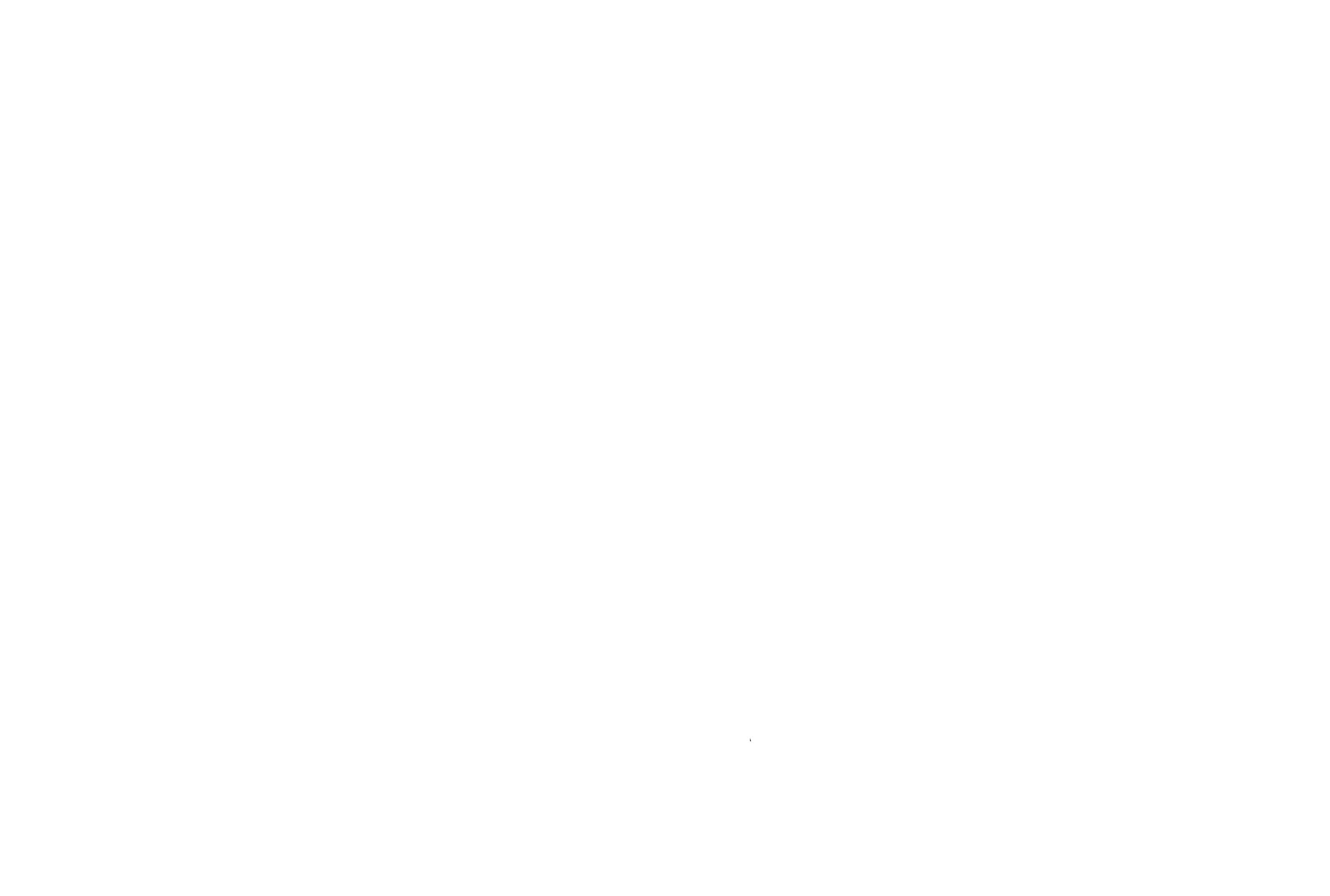 City Services Logo_white