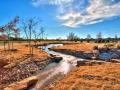 20_whispering_creek_mustang_403
