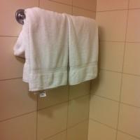 The Wet Towel Affair