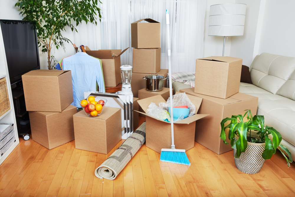 An assortment of cardboard boxes containing valuables is spread out across a living room. A broom, potted plant, rug, dress shirts, a lamp and a bin of fruit can be seen around them.