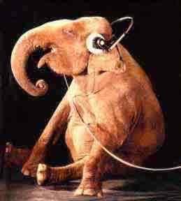 propmasters-props-elephant