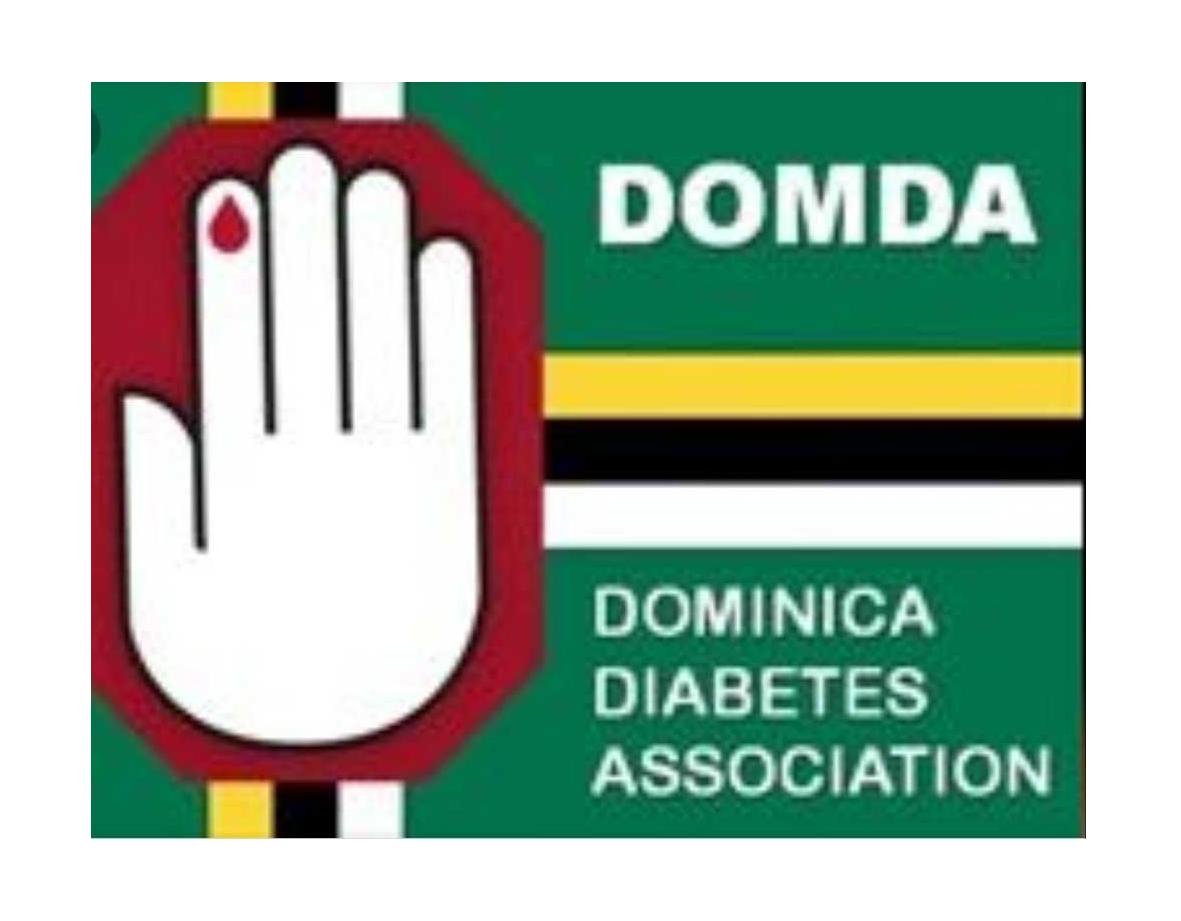 Launch of Diabetes Association Adopt Healthy Habits Programme
