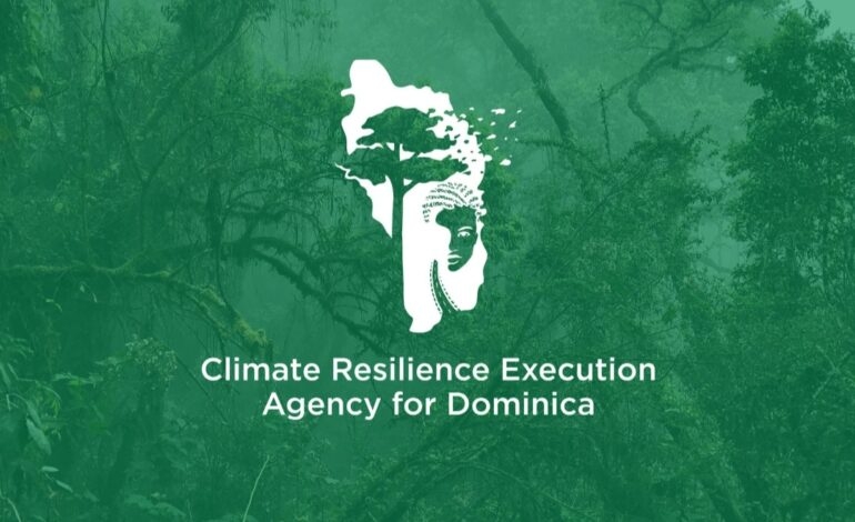 CREAD Strengthens MSME Sector in Dominica by Developing Detailed Database