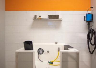 image of dog bath