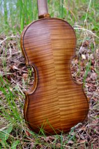 fiddle-006-0031