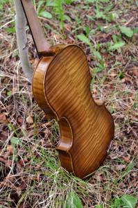 fiddle-006-0032