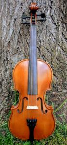 fiddle-np-01-19