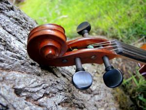 fiddle-np-01-22