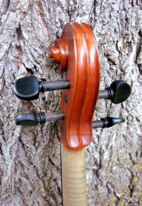 fiddle-np-01-26