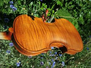 fiddle-np-01-34