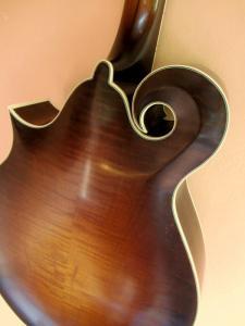 mandocello-80