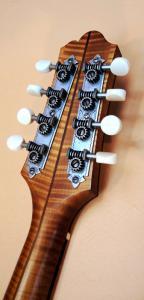 mandolin-2point-215-642