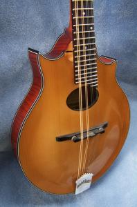 mandolin-2point-8199