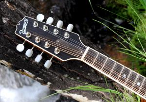mandolin-a2-163-013