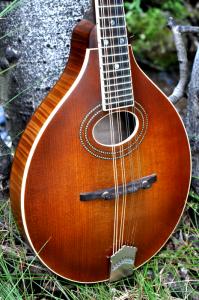 mandolin-a2-163-031