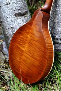 mandolin-a2-163-032