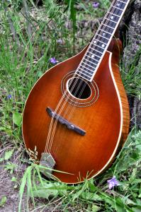 mandolin-a2-163-045
