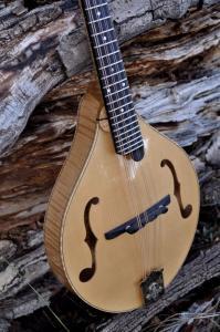 mandolin-a5-146-056