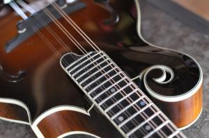 mandolin-f5-0040