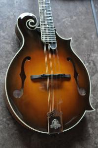 mandolin-f5-0052