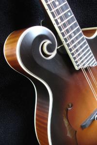 mandolin-f5-02848