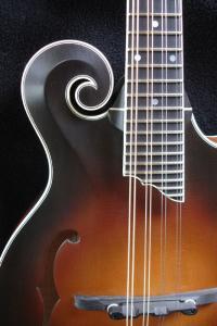 mandolin-f5-02849