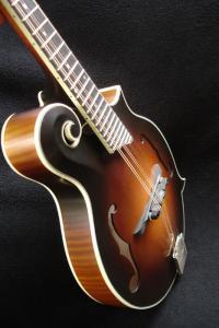mandolin-f5-02859