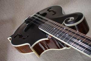 mandolin-f5-03068