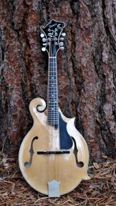 mandolin-f5-160-005