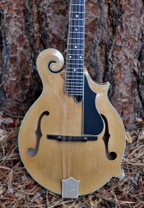 mandolin-f5-160-006