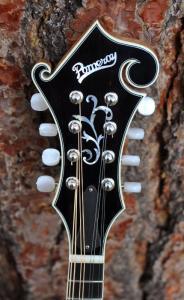 mandolin-f5-160-014
