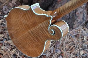 mandolin-f5-160-032