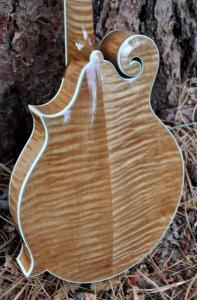 mandolin-f5-160-042