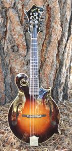 mandolin-f5-223-41