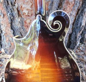 mandolin-f5-223-49