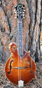 mandolin-f5-225-20