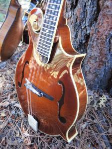 mandolin-f5-225-24