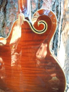 mandolin-f5-225-32