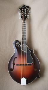mandolin-f5-5230043
